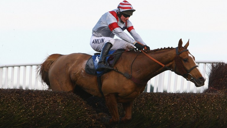 Tom O'Brien won the Welsh Grand National on Dream Alliance for Philip Hobbs in 2009