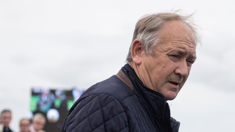 Charles Byrnes: licence has been suspended for six months after Viking Hoard was found to have tested positive for a sedative following a race at Tramore in which he was heavily laid to lose