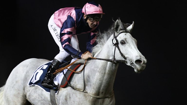 DUBAI, UNITED ARAB EMIRATES - JANUARY 21: Adrie De Vries riding Lord Glitters wins the Singspiel Stakes during the Dubai World Cup Carnival Races at the Meydan Racecourse on January 21, 2021 in Dubai, United Arab Emirates. (Photo by Francois Nel/Getty Ima