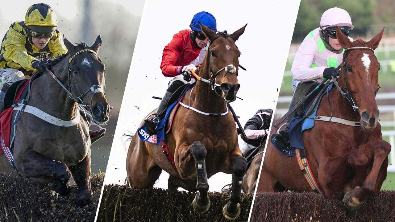 Drinmore betting advice genoa vs napoli betting expert sports