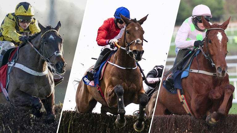 Which Cheltenham Festival favourites are worth taking on?