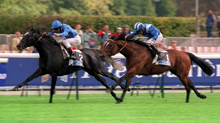 Slickly: a top-class miler and then leading sire in France
