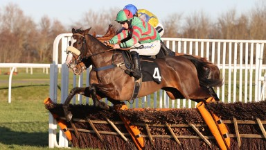 TOMMY'S OSCAR and Danny McMenamin wins at MUSSELBURGH 22/1/21Photograph by Grossick Racing Photography 0771 046 1723