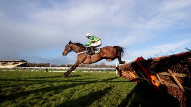 NEWTON-LE-WILLOWS, ENGLAND - JANUARY 23: Buveur D'Air ridden by ico de Boinville during the New One Unibet Hurdle (Grade 2) at Haydock Park Racecourse on January 23, 2021 in Newton-le-Willows, England. (Photo by David Davies - Pool / Getty Images)