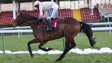 ROYALE PAGAILLE and Tom Scudamore win the Peter Marsh Chase for trainer Venetia Williams at HAYDOCK PARK 23/1/21Photograph by Grossick Racing Photography 0771 046 1723