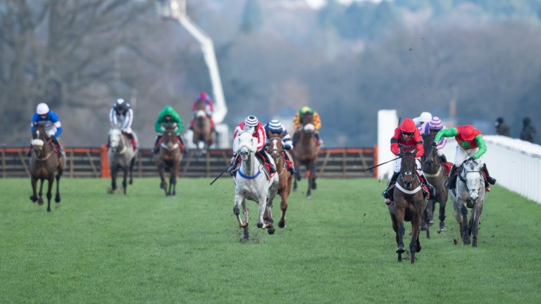Craigneiche (red): winner of the Grade 3 handicap hurdle for Nicky Henderson and Tom Cannon