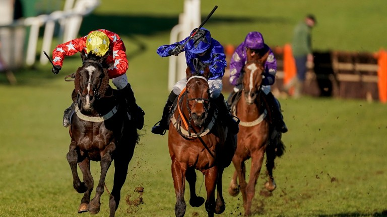 Runners in the opening maiden hurdle at Plumpton, which was won by Harry Reed aboard Khan (left)