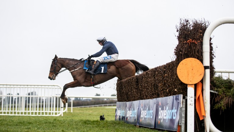 Colreevy; 3-1 favourite for new race on Gold Cup day