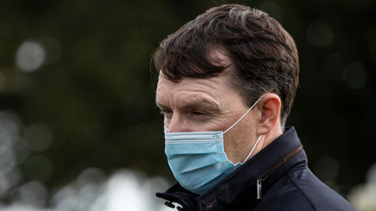 Aidan O'Brien: optimistic he will be able to have runners at the Guineas meeting