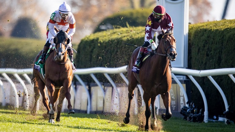 Golden Pal: victorious in the Breeders' Cup Juvenile Turf Sprint