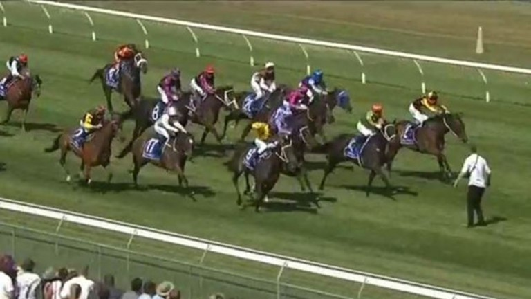 A racegoer put himself, runners and jockeys in danger by standing on the track during a race at Trentham racecourse