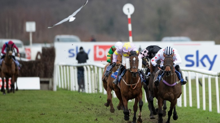 Takingrisks (left): 40-1 outsider caused a surprise in the Sky Bet Chase