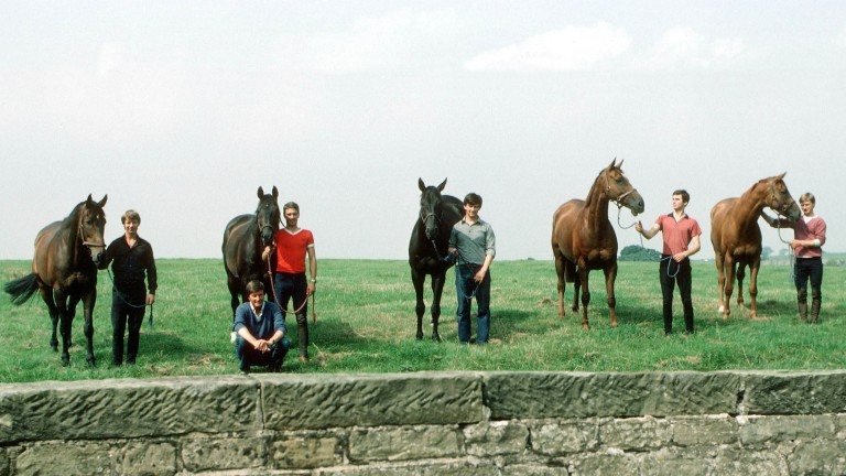 Michael Dickinson's Famous Five Horses who filled the first five places in the 1983 Chelteham Gold Cup L-R Bregawn, Captain John, Wayward Lad, Silver Buck and Ashley House with Michael Dickinson squatting at the front