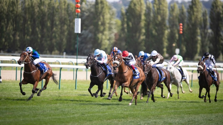 Love So Deep (far left): the daughter of Deep Impact struck at Listed level and is booked in for Kingman