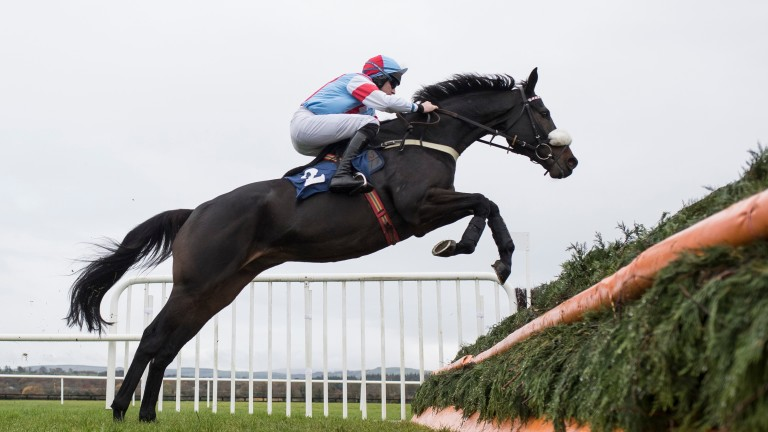 Connections were keen to test the Gold Cup credentials of Saint Calvados at Cheltenham last week but are not certain to take up the option of the rescheduled Cotswold Chase at Sandown