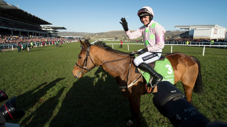 Faugheen and Ruby Walsh after their 2015 Champion Hurdle triumph at Cheltenham