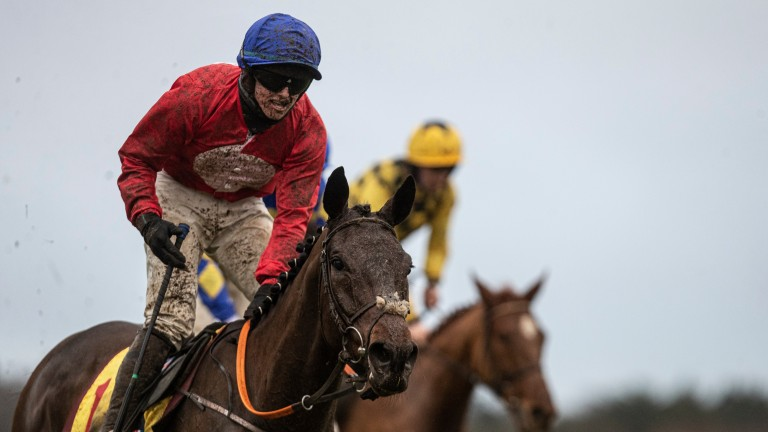 A Plus Tard: one of Al Boum Photo's chief rivals for this year's Cheltenham Gold Cup