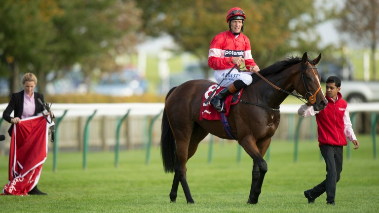Tiggy Wiggy: the dam of the Cheveley Park Stakes winner was bought at the Tattersalls February Sale