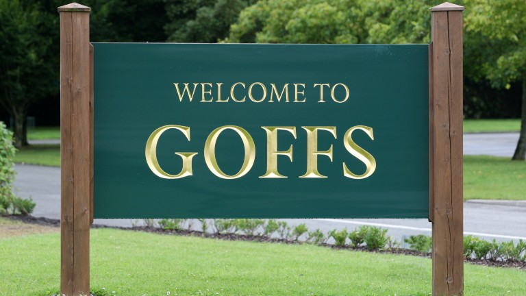 Goffs: will hold another timed online sale in March