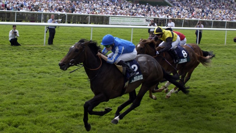 Macadamia winning the 2003 Falmouth Stakes for Vestey