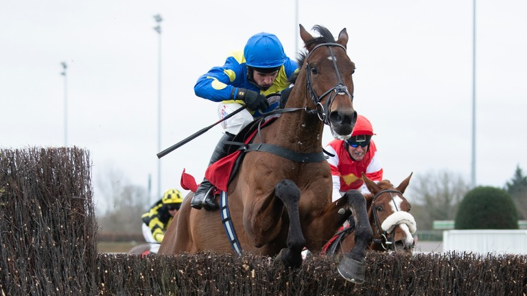 Shan Blue jumped his rivals silly in the Grade 1 Ladbrokes Kauto Star Novices' Chase at Kempton