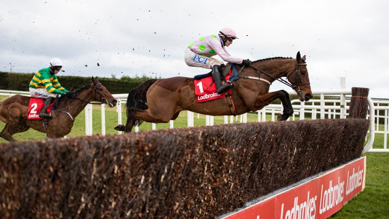 Chacun Pour Soi soars over a fence at Leopardstown under Paul Townend on his way to another imperious victory
