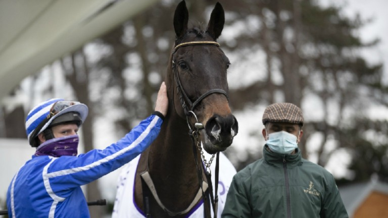 """Willie Mullins on Energeumene: """"I'm looking forward to getting him out"""""""