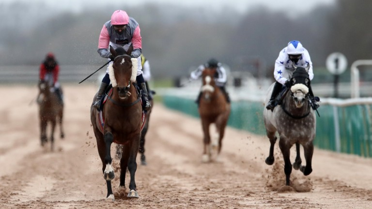 Blowing Dixie winning at Southwell in February