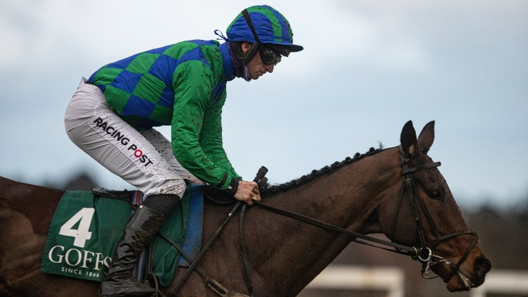 Kilcruit: made a huge impression at the Dublin Racing Festival