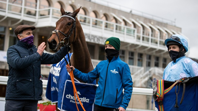 """Henry de Bromhead on Honeysuckle: """"We are happy to go for the Champion Hurdle with her"""""""