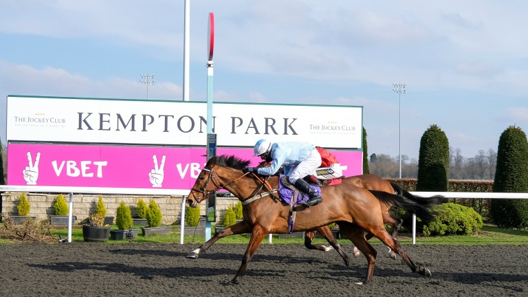 Sheila Nash provides trainer Harry Whittington with a welcome winner