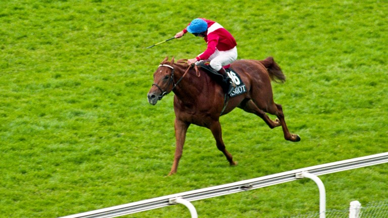 Splendid isolation for George Duffield and Pivotal in the King's Stand Stakes at Royal Ascot