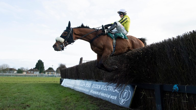 Allmankind: survived a blunder at the second-last to land the Grade 2 event