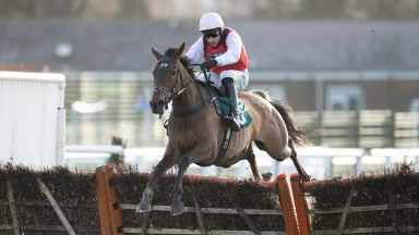 Molly Ollys Wishes (Harry Skelton) clears the final flight and wins the listed Mares Hurdle RaceWarwick 15.2.21 Pic: Edward Whitaker/Racing Post