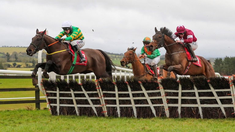 Thedevilscoachman: recorded his third hurdles win at Punchestown last time