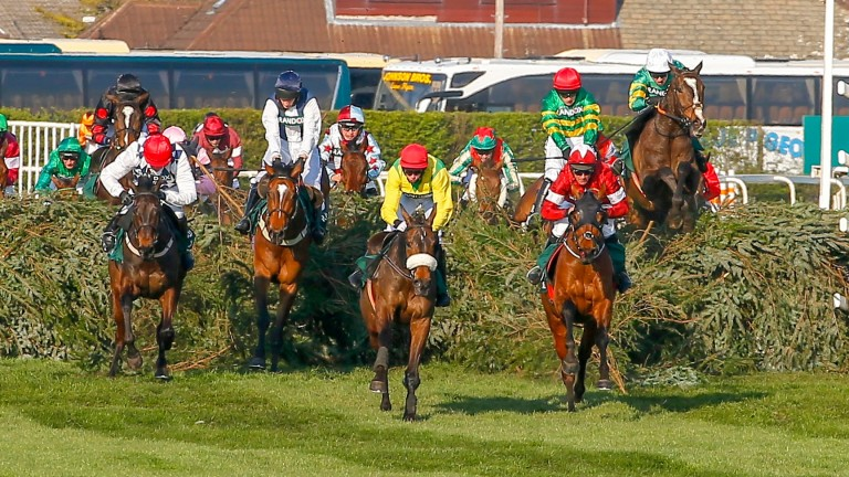 Tiger Roll (right): will not run in this year's Grand National, so who will take his crown?