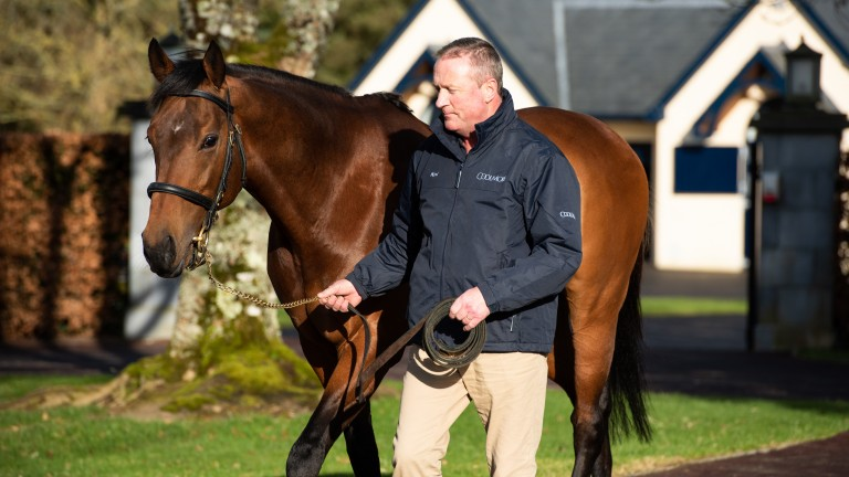 Noel Stapleton and the latest son of Galileo to join the Coolmore roster, Circus Maximus
