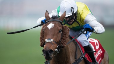 Cloth Cap (Tom Scudamore) wins the Ladbroke Trophy at Newbury to announce himself as a live hope for the Randox Grand National
