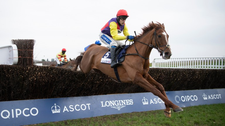 Remastered produced a lovely round of jumping to win the Reynoldstown under Tom Scudamore