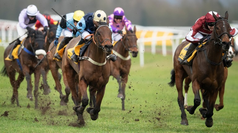 Betfair Hurdle winner Soaring Glory (right) will be bidding to do better than Get Me Out Of Here, My Tent Or Yours and Kalashnikov in the Supreme