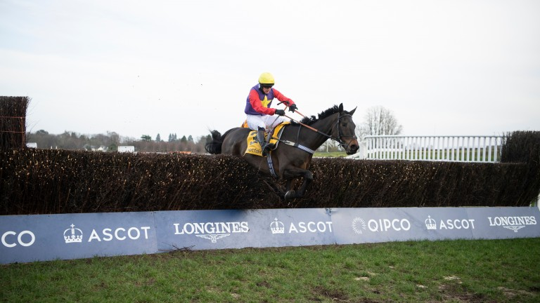 Dashel Drasher clears the last in the Grade 1 Ascot Chase