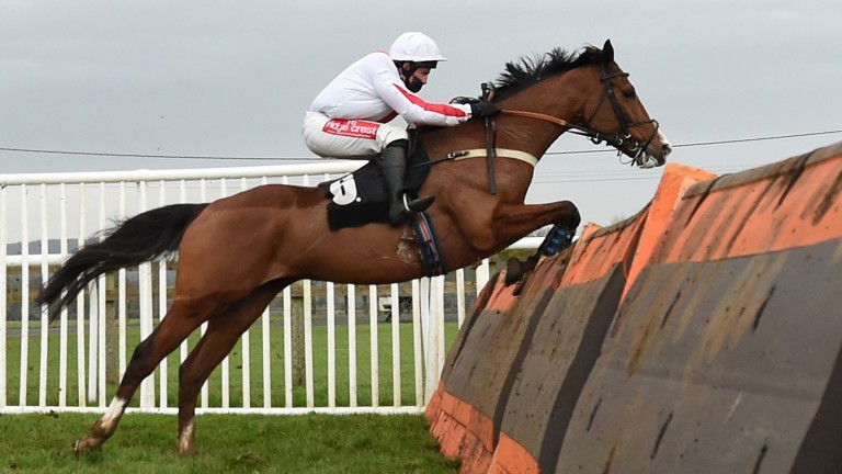No slip-ups for Goshen this time as he takes the last flight on the way to Kingwell Hurdle success
