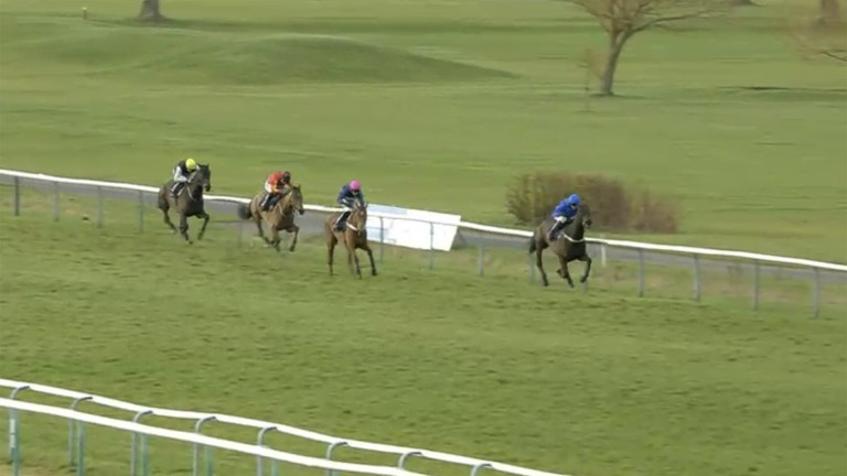 Minella Tara (third) is a long way behind the leader approaching the last at Southwell