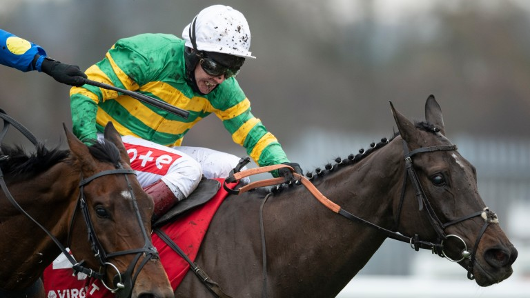 Sporting John: the only other Grade 1-winning horse in the field