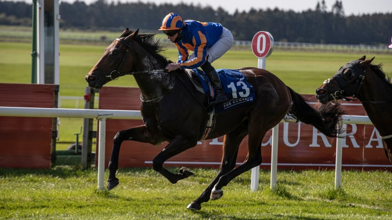 Van Gogh remains among the entries for both the Cazoo Derby and the  Qatar Prix du Jockey Club