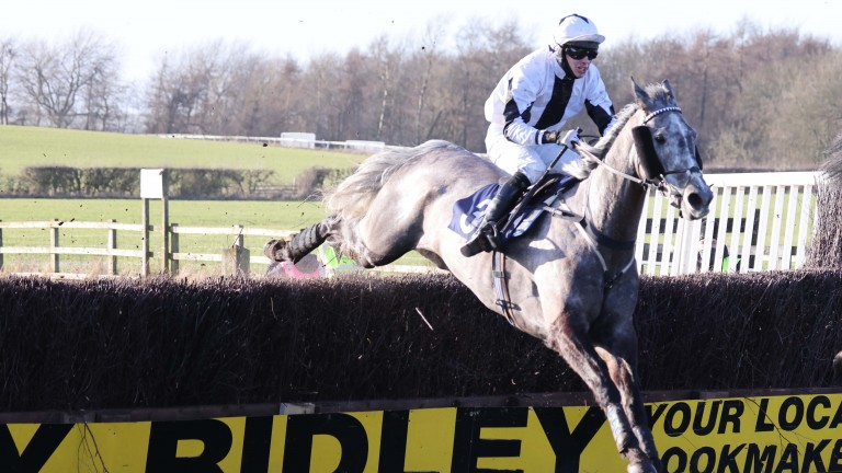 Road Warrior and Kane Yeoman on their way to victory in the novice handicap chase