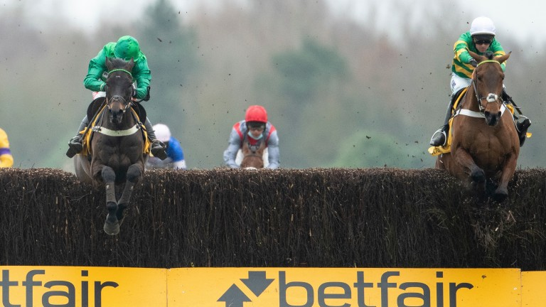 """Nicky Henderson described Champ's jumping at two-mile pace as """"exceptional"""" following his comeback second to Sceau Royal (left) at Newbury last Sunday"""