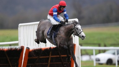 Grumpy Charley: made it three from three at Chepstow on Thursday
