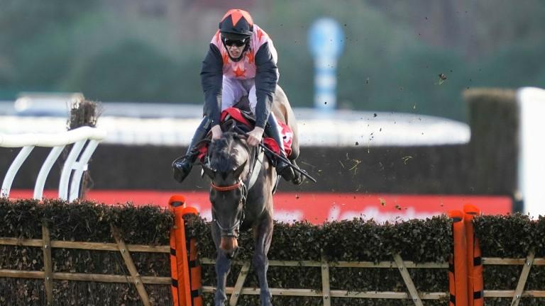 Honneur D'Ajonc: fell at Kempton in December but bounced back in style