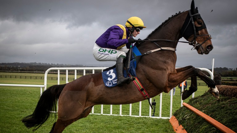 Cilaos Emery: former course-and-distance winner was classy enough to finish fourth in last year's Unibet Champion Hurdle